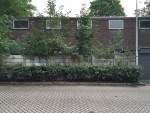 http://ontwerplab.nl/files/gimgs/th-48_tilburg-korvelseweg-minderbroederspad-bestaand-magazijn.jpg